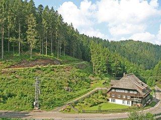 Historische Sagemuhle #4418.1, Furtwangen