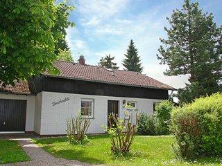 Drachenfels #4469.1, Dittishausen
