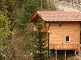 am Arlberg #5884.1