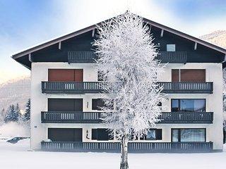 Dachstein #6205.1