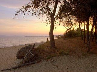 Golfo di Follonica #7047.2, Campiglia Marittima