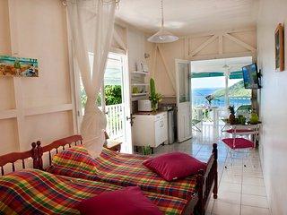 Studio climatisé, WIFI, TV TNT, magnifique vue mer, terrasse, hamac, kitchenette équipée.