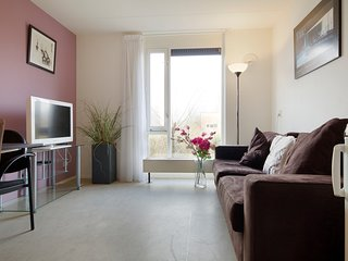 Spacious apartment near centre with roof garden, Ámsterdam