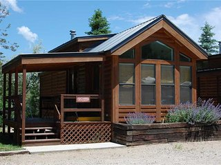 Cozy 'Modular' Style 1 BR with Sleeping Loft Cabin at Three Rivers Resort in Almont (#35)