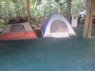 Tienda de campaña (c  bajo cubierta  - Cocles