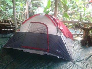 Tienda de campaña  bajo cubierta (b  - Cocles