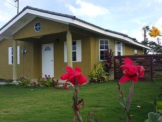 Island Vibz Villa- Ocho Rios