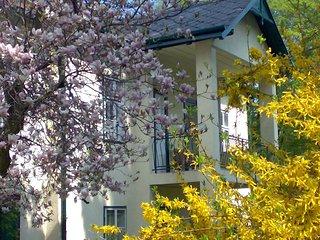 Wienerwald Villa mit Pool #6060.1, Tullnerbach