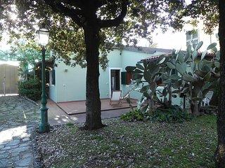 Villa Nicodemi Basement #7230.1