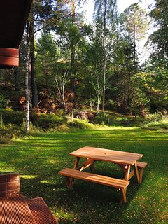 Picnic table in garden.