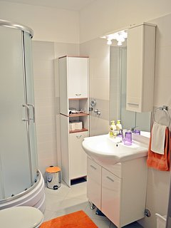 Bathroom with shower, toilet, washbasin and bathroom closet.
