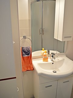 Bathroom - washbasin, shower and bathroom closet.