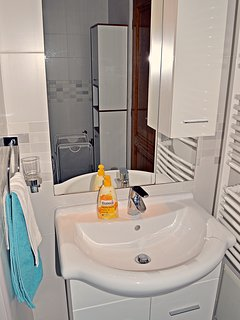 Bathroom - washbasin and bathroom closet.