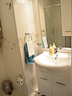 Bathroom - washbasin and shower.