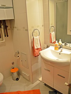 Bathroom - washbasin and shower.