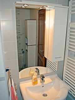 Bathroom - washbasin and bathroom closet.