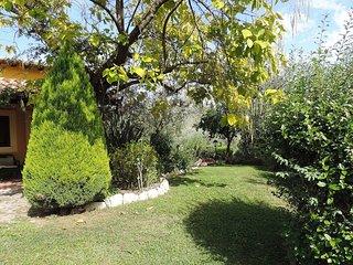 Villa del Canneto #7984.1, Castelnuovo di Farfa