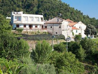 Ancardan #8266.1, Amalfi