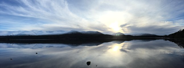 Near by Loch Morlich in the Cairngorms. (Photo copyright by Kate Reid)