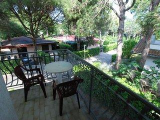Villa Flamicia #9222.4