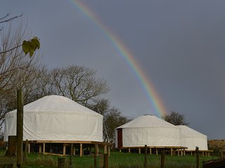 Kids Love Yurts