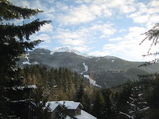 Vale Inn Condo - Whistler, Creekside
