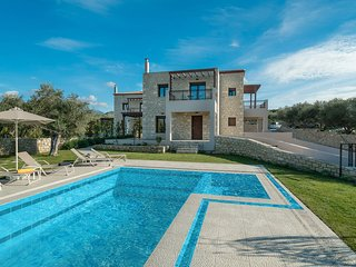Olive Garden Villas  ( Elanthi )  with private pool, Panormos