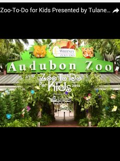 Visit our beautiful Audubon zoo