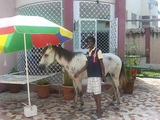 SenegambiaStrip walkingdistance VIP Villa