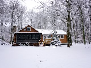 Cozy Mountain Log Cabin—Sleeps 10, Upgraded Kitchen, WiFi, Private Lake Access!