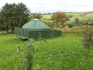 Heddwch Y Mynydd, Blanca Yurts, Llanllwni, Carmarthenshire