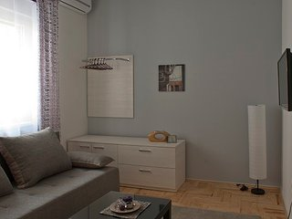 Novi Sad apartmani Forget Me Not -grey
