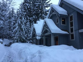 Tastefully Furnished, Luxury 4 Bedrood, Woodland setting, Ski Home, Hot Tub