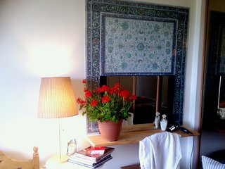 charming apprtment with a river view and a terrace close to Paris and Disneylan