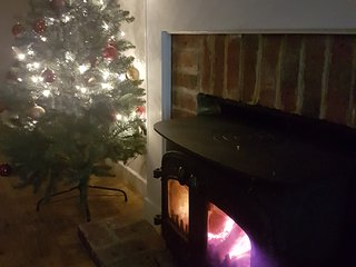 wood burner and Christmas Tree decorations