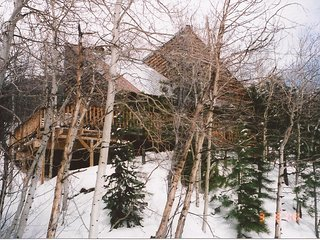 Cozy Mountain Cabin Close to Monarch Ski Resort