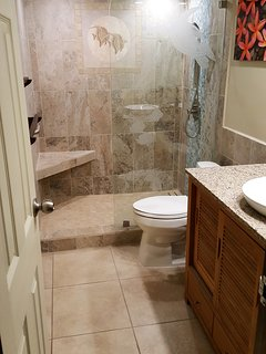 Newly Remodeled bathroom (Dec. 2016) with walk-in shower.