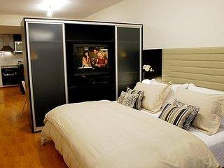 Lovely 1 Bedroom Studio in Recoleta