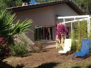 Villa de standing avec spa, entre océan et bassin dArcachon., Cap-Ferret