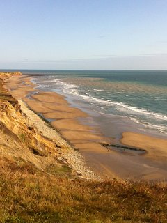 Compton beach, great for swimming, surfing and fossil hunting (not all at the same time).