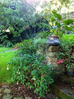 Un coin du jardin