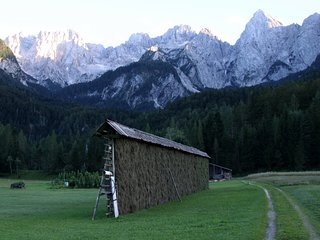 Studio apartment in Villa Flora (1-4 people) AP.no.8, Kranjska Gora