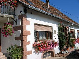 Gîtes Alsace le Coquelicot