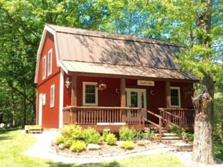 Silver Lake, Awesome Cabin & Location,  Pool, Beach, Sand Dunes, Lake Michigan