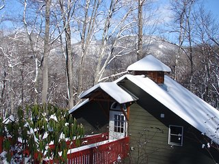 Secluded Cabin Min to Downtown Asheville, Swannanoa