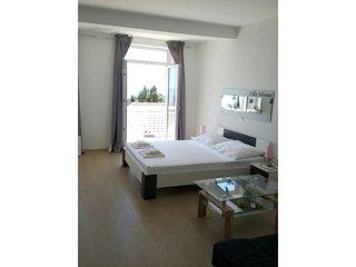 TH03569 Apartments Villa Silvana / Studio A3 2+2