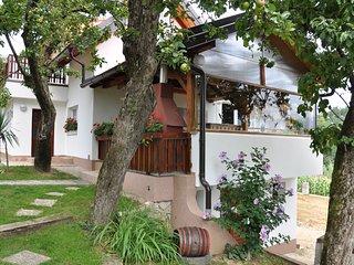 Apartment 'Eva' Lepoglava