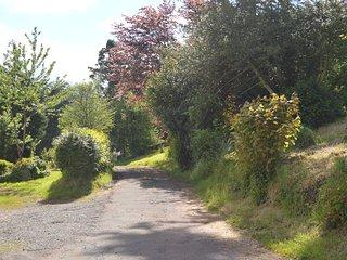 Driveway to Burton Hall