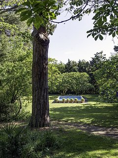 Le parc (2 ha) avec la piscine au sel (10 x 5 m)