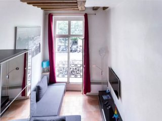 ENCHANTING apt in PARIS center /Le Marais Pompidou